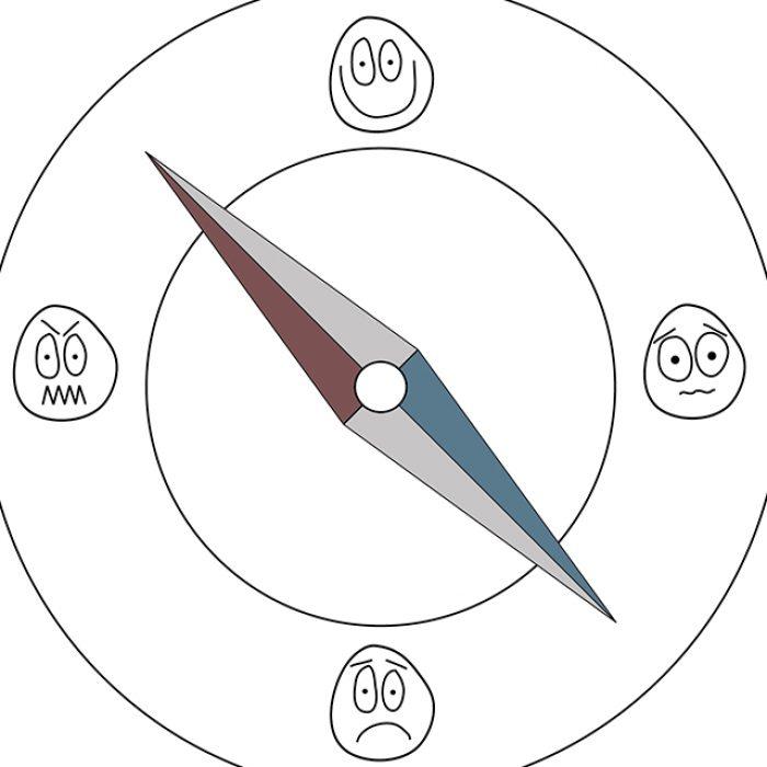 Lite Kompass